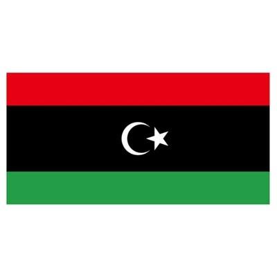 利比亚COI认证