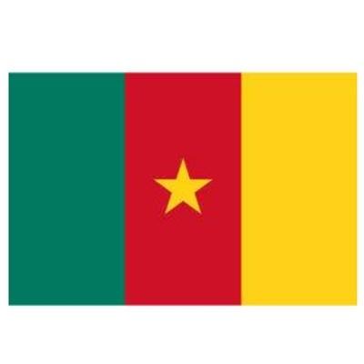 喀麦隆COC认证
