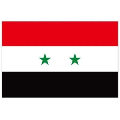 叙利亚COC认证